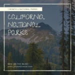 Wow! 4 National Parks in ONE Month! California National Parks..