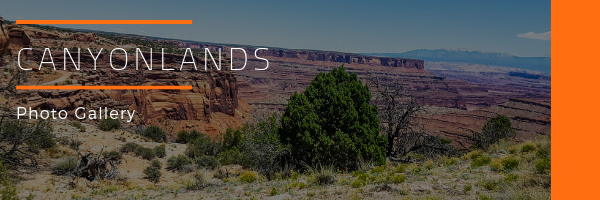 Canyonlands National Park Photo Gallery