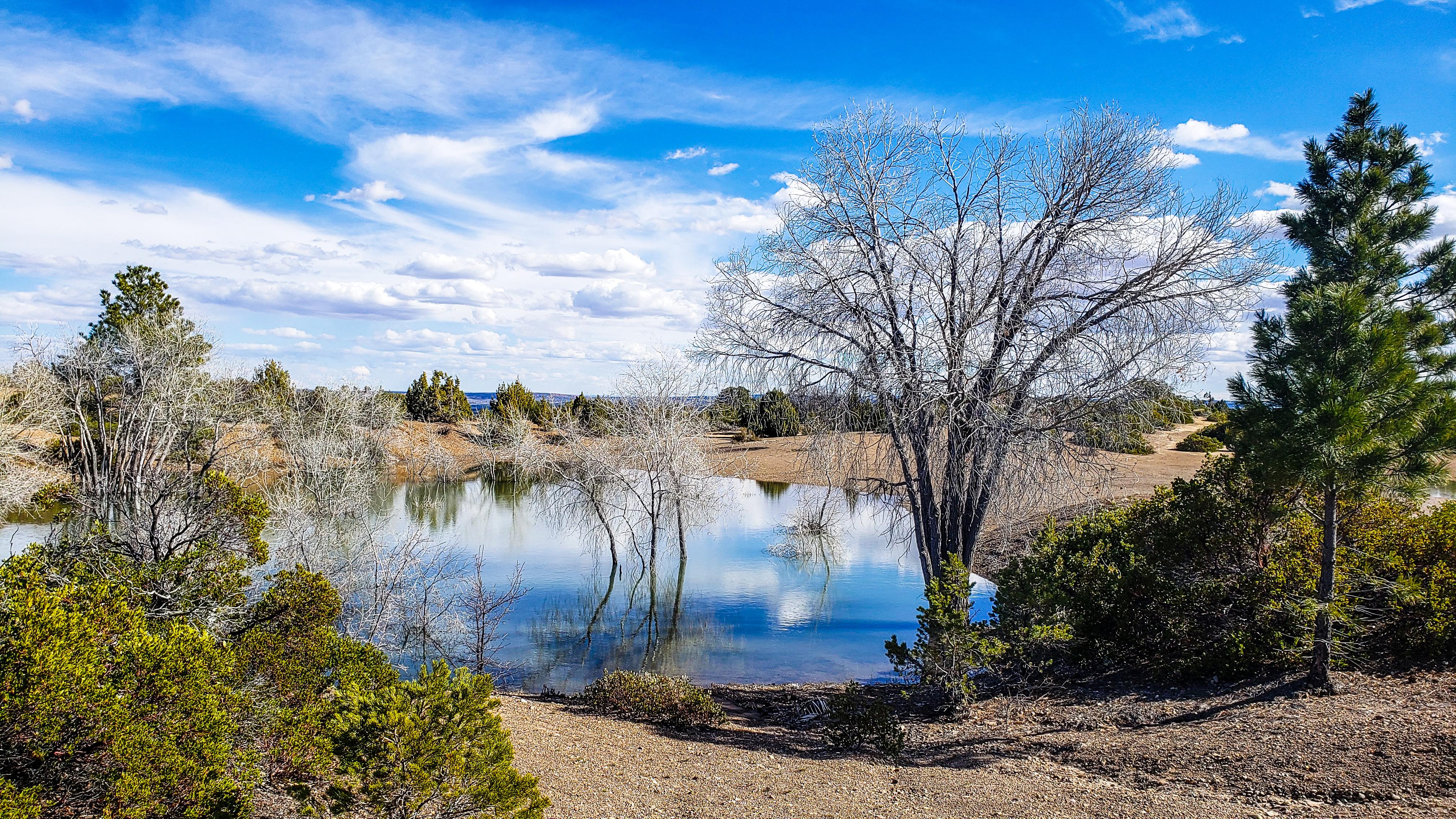 Beautiful BLM area near Zion National Park
