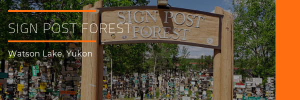 Sign Post Forest - Watson Lake - Photo album
