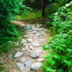 Bird Creek Walking Trail