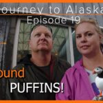 Journey to Alaska Episode 19 | Alaska SeaLife Center | Seward, Alaska